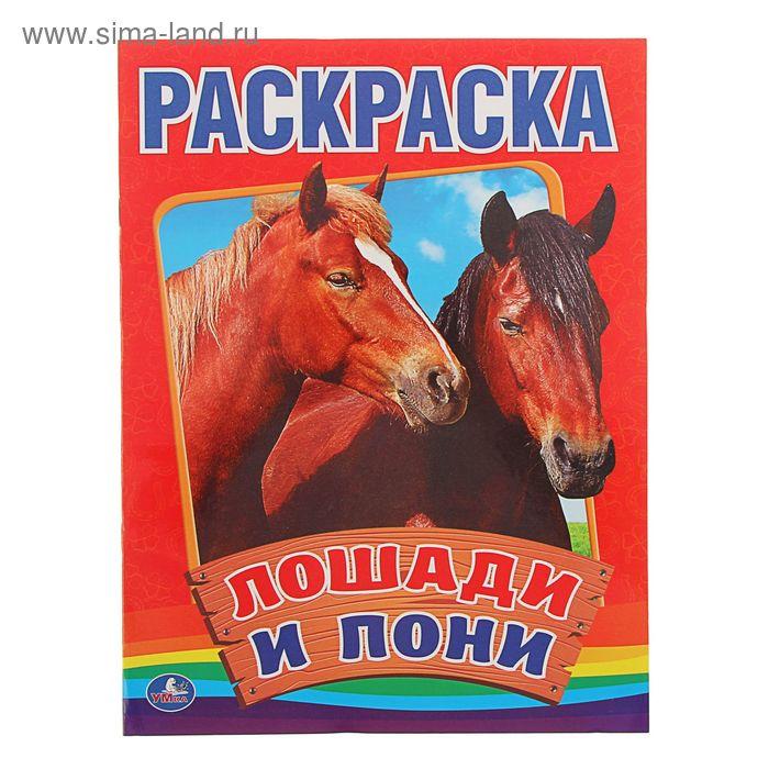 """Первая раскраска А4 """"Лошади и пони"""", 215*290мм"""