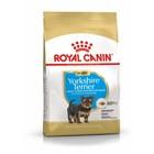 Сухой корм RC Yorkshire Terrier Junior для щенков йоркширского терьера, 500 г