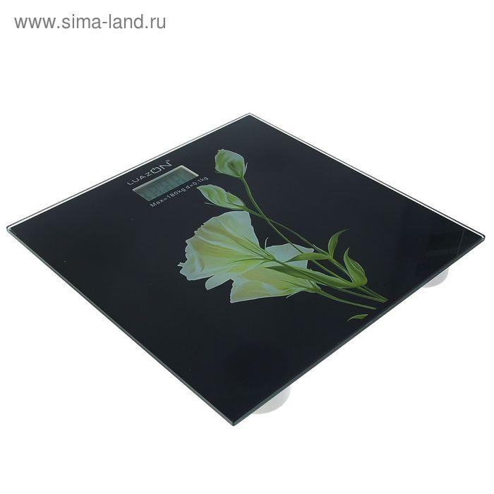 Весы электронные напольные LuazON LVP-1808 «Цветок», до 180 кг УЦЕНКА