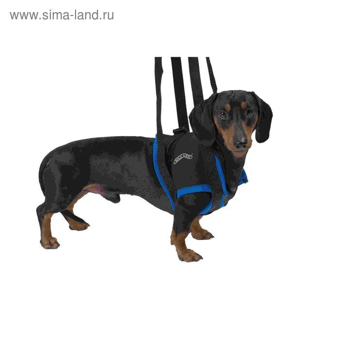 Вожжи Kruuse Walkabout harness на передние конечности,и M