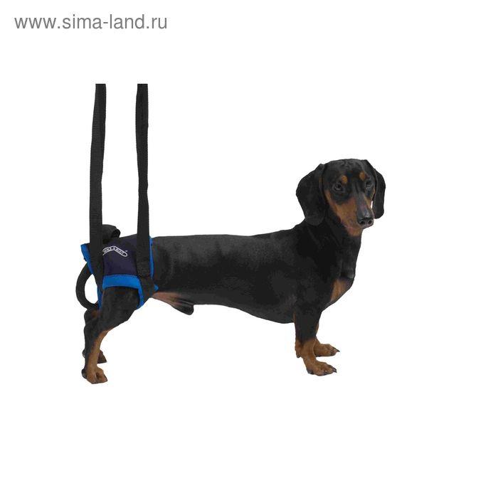 Вожжи Kruuse Walkabout harness на задние конечности, L