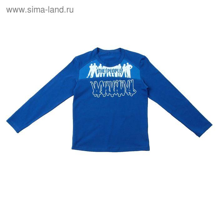 Джемпер для мальчика, рост 110-116 см (60), цвет васильковый/голубой (арт. Д 08232-П_Д)
