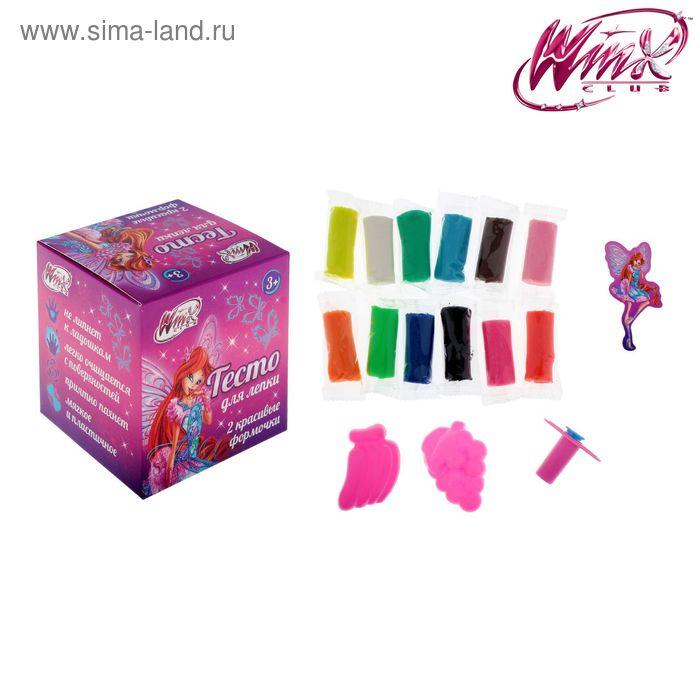 Набор теста для лепки, феи ВИНКС: Блум, 12 цветов по 16 гр, шприц, 2 формочки