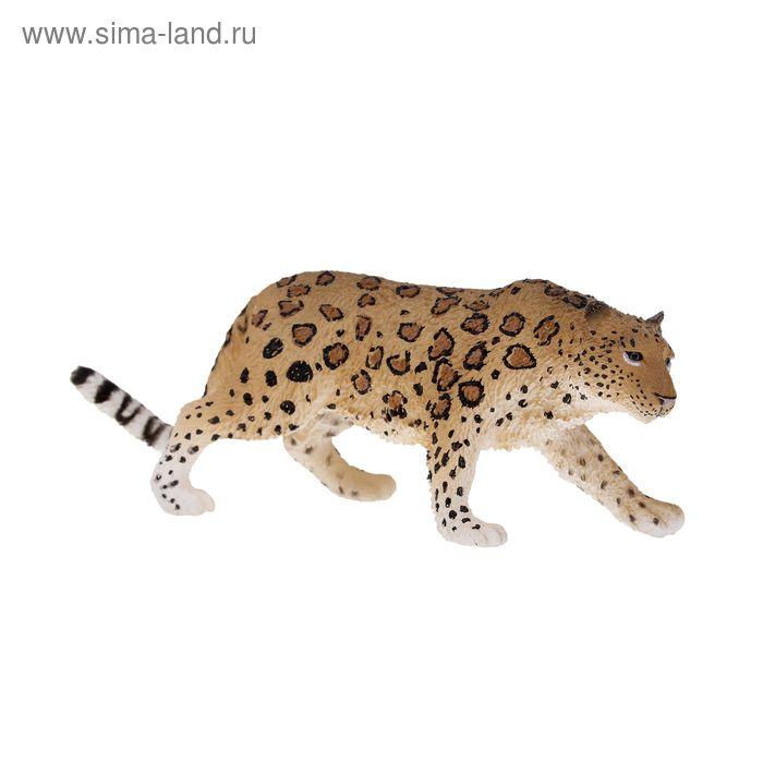 """Фигурка """"Амурский леопард"""" 88708b"""