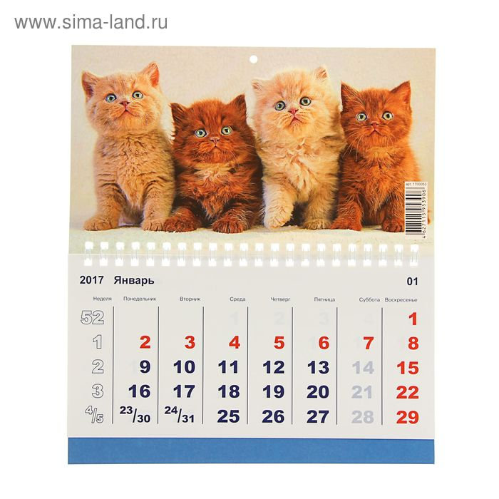 """Календарь моно """"Домашние любимцы"""" 20х24 см"""