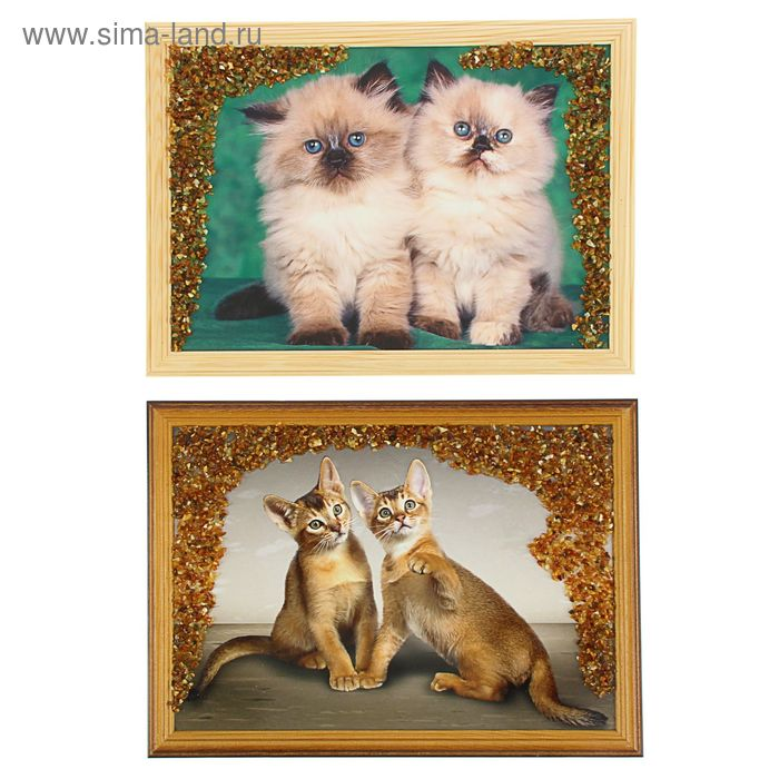 Картина янтарь 21х30 см Кошки микс