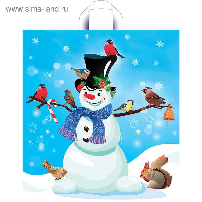 """Пакет """"Снежный друг"""", полиэтиленовый с петлевой ручкой, 42х38 см, 33 мкм"""
