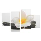 """Модульная картина на подрамнике """"Белый цветок у камней"""", 2 — 30×45, 1 — 29,5×69, 1 — 34×69"""