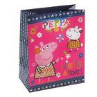"""Пакет подарочный """"Пеппа и Сьюзи"""" 23 х 18 х 10 см, Peppa Pig"""