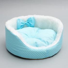 Лежанка для котят и щенков, 35 х 14 см, голубая
