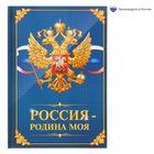 """Блокнот в твердой обложке """"Россия - родина моя"""", 40 листов"""