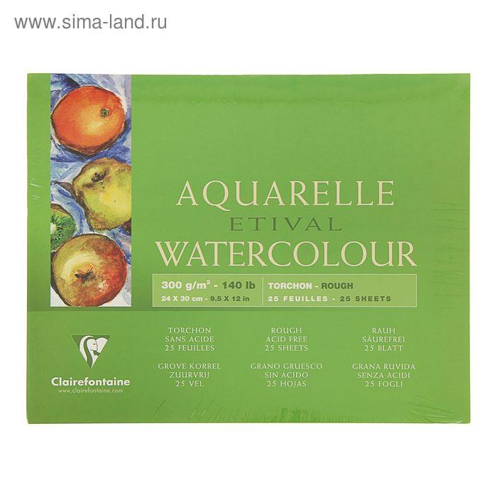 Альбом для акварели грубая техника В4 240*300 мм Clairefontaine Etival 25 листов 300 г/м2 склейка торшон 96461С