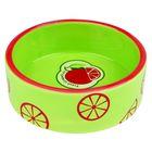 Миска Trixie  Fresh Fruits керамическая , 0.3 л/ф 12 см, светло-зеленая