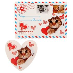 """Подарочный конверт с открыткой """"Мур-мур почта"""",10 х7 см"""