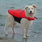 Спасательный жилет Trixie для собак, M: 44 см, (45-72 см./30 кг.), красный/черный