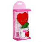 """Подарочный набор """"Романтика"""" в набор входят: кружка и сердце, в коробке"""