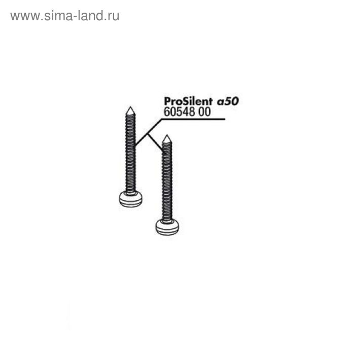 Винты для корпуса компрессора ProSilent a50,JBL PS a50 body screws, 2 шт.