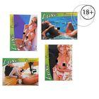 Презервативы «Luxe» Premier, 3 шт