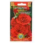 """Семена Шток-роза """"Факел"""", Дв., 12 шт"""