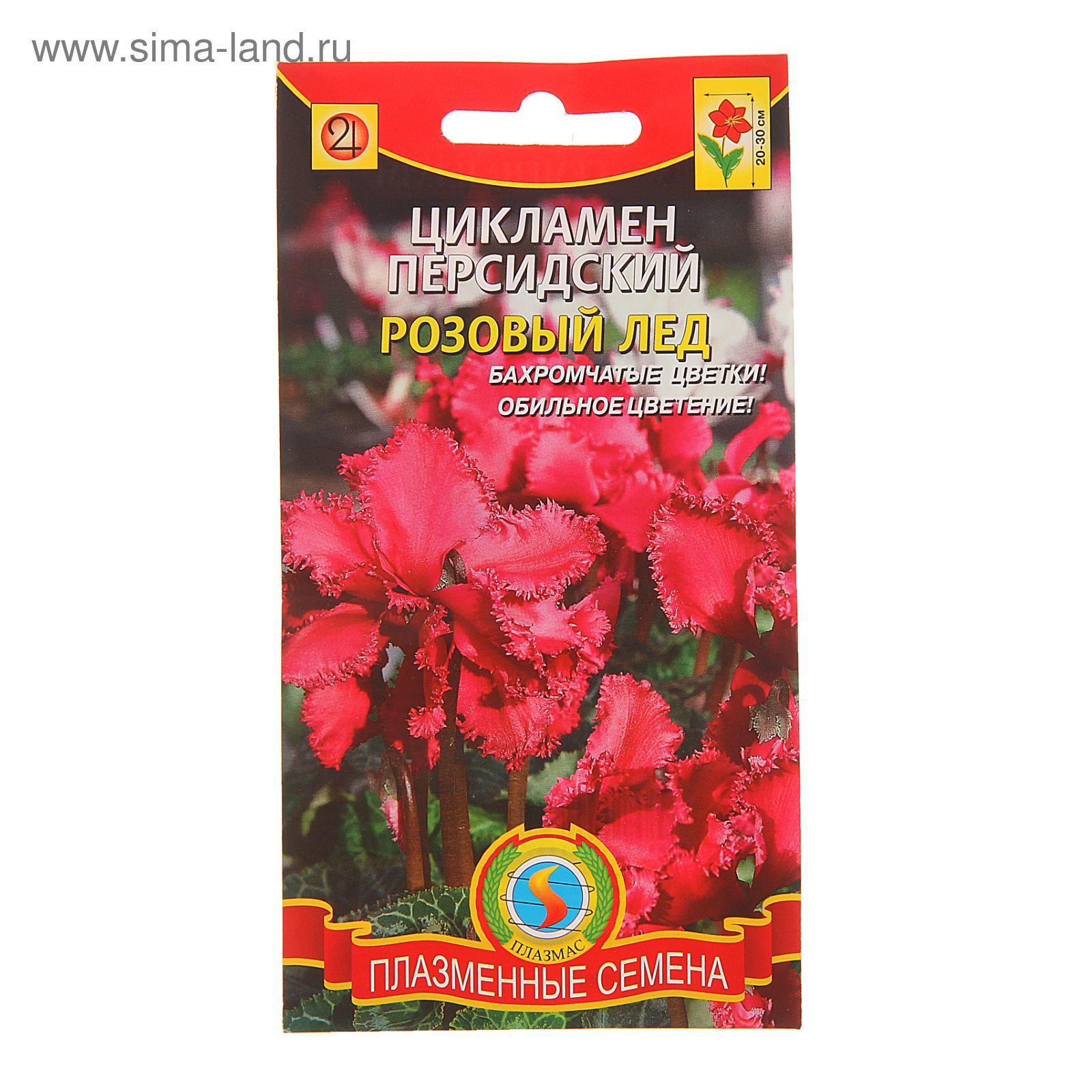Семена комнатных и экзотических растений купить почтой в 87