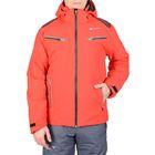 Одежда для сноуборда и горных лыж