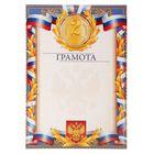 Грамота «2 место. Российская символика с лавром»