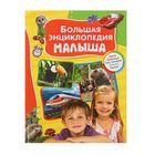 «Большая энциклопедия малыша»