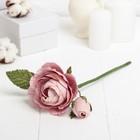 """Декоративный цветок """"Королевская роза"""", светло-розовый"""