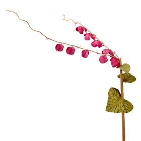 Декоративный цветок 'Ветвь', коралловое вино Ош