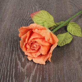 Декоративный цветок 'Чайная роза' Ош