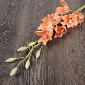 Декоративный цветок 'Орхидея цимбидиум', пудра Ош