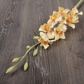 Декоративный цветок 'Орхидея цимбидиум', нежный персик Ош