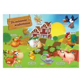 Обучающий коврик-подкладка 'Домашние животные', А3 Ош