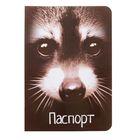 """Обложка для паспорта """"Енот"""""""