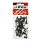 Дюбель для хомута TUNDRA krep, 6х35 мм, нейлон, в пакете 20 шт.