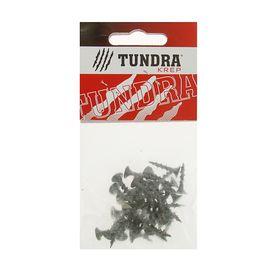 Саморезы по дереву TUNDRA krep, 3.8х19 мм, оксид, крупный шаг, 40 шт.