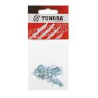 Саморезы с прессшайбой TUNDRA krep, 4.2х16 мм, острый, 20 шт.