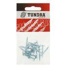 Саморезы с прессшайбой TUNDRA krep, 4.2х25 мм, острый, 16 шт.