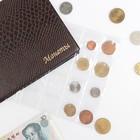 Лист для монет горизонтальный 250*200 мм на 24 ячейки 48х52 мм