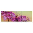 Часы настенные модульные «Фиолетовые орхидеи», 35 × 110 см