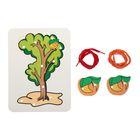 """Шнуровка-раскраска """"Дерево. 2 абрикоса"""", поле+2 эл."""