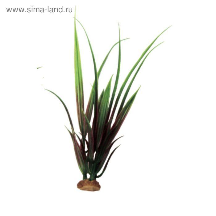 Комп. из искусств. растений ArtUniq Acorus red-green 19 - Акорус красно-зеленый, 6x6x19 см