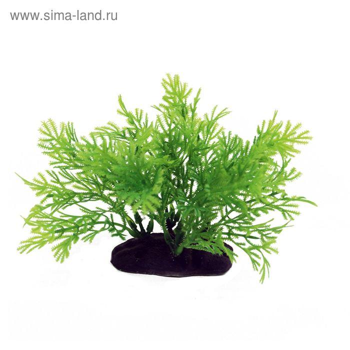 Комп. из искусств. растений ArtUniq Hottonia 10-12 - Хоттония, 10-12 см