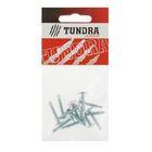 Саморезы с прессшайбой TUNDRA krep, 4.2х25 мм, сверло, 12 шт.