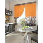 """Комплект штор для кухни """"Шинск"""", размер 150х180 см. - 2 шт. и 2 подхвата 920108"""
