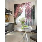 """Комплект штор для кухни """"Лайни"""", размер 150х180 см. - 2 шт. и 2 подхвата 920106"""