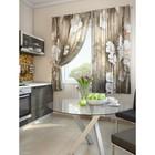 """Комплект штор для кухни """"Инли"""", размер 150х180 см. - 2 шт. и 2 подхвата 920102"""