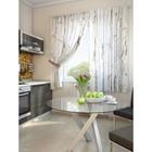 """Комплект штор для кухни """"Дальжи"""", размер 150х180 см. - 2 шт. и 2 подхвата 920098"""
