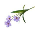"""Цветы искусственные """"Космея"""" фиолетовая"""