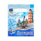 Пакет подарочный «Мурманск. Морской»